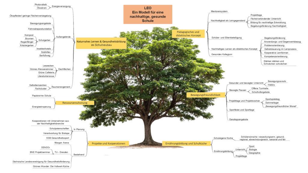Organigramm gesunde, nachhaltige Schule